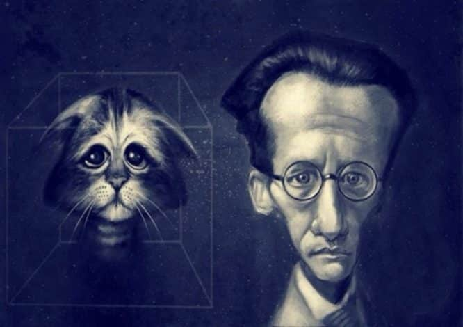 Photo of Erwin Schrödinger ve Onun Gizemli Kedisi